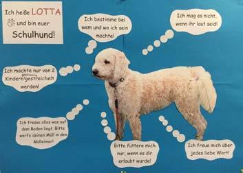 Pestalozzi Primary School Regensburg - school dog Lotta