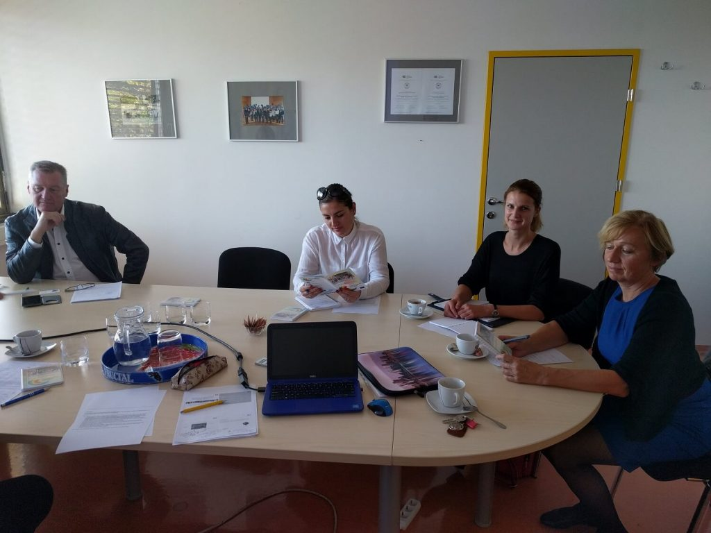RoMigSc Project - meeting with schools